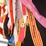 Correllengua 2012-105