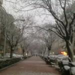 Avinguda de la Verge de Montserrat. Per Cristina